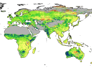 World map using satellite data showing the per cent amount that foliage cover has changed around the world from 1982 to 2010.