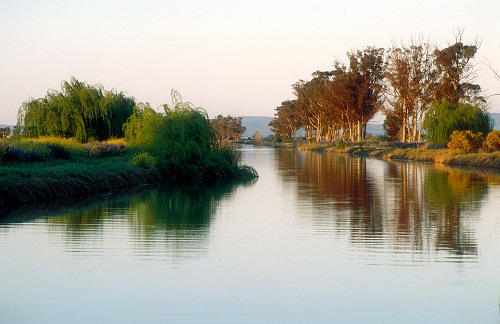 Evening light and reflections on the main irrigation canal at Griffith