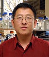 Ming-Bo Wang