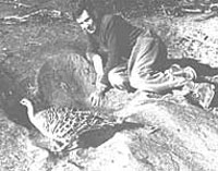 Harry Frith at a mallee-fowl mound with attendant male bird