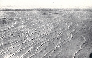 Sand ridges beginning at Goyder's lagoon on south-east of the Arunta desert