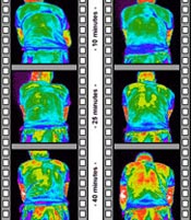 Thermal images comparing the temperature of an athlete wearing Sportwool and another wearing polyester