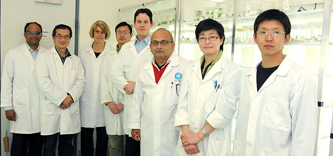 The CSIRO Omega3 team stand in the lab