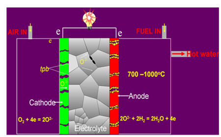 A fuel cell converts fuels (hydrogen