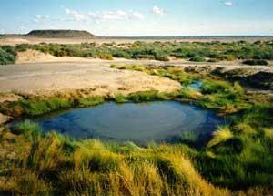 Mound spring near Lake Eyre South