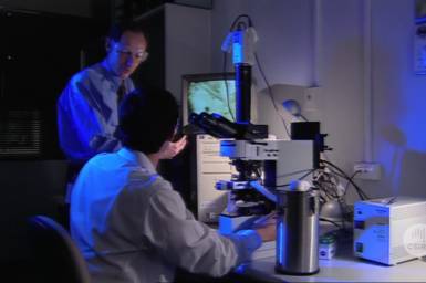 Researchers with electron microscope.