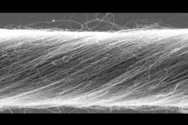 Electron micrograph of carbon fibre strand.