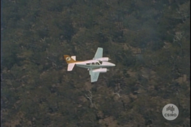 Light aircraft conducting controlled burning.