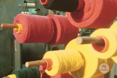 Spools of coloured wool