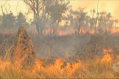 Controlled burn of grasslands.